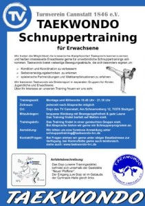 taekwondo_schnuppertraining